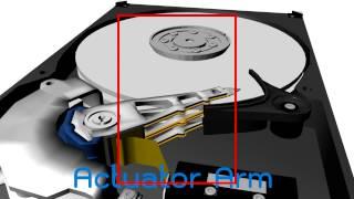 HDD 3D Maya for AR New Gen
