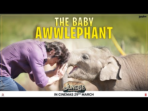 Junglee |The Baby Awwlephant | Vidyut Jammwal | 29th March