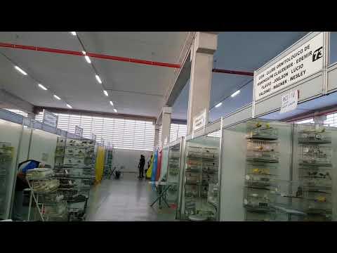 67º Campeonato Brasileiro de Ornitologia - Venham visitar, Eu recomendo ! from YouTube · Duration:  18 minutes 52 seconds