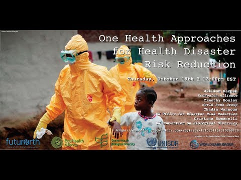 One Health Approaches for Health Disaster Risk Reduction