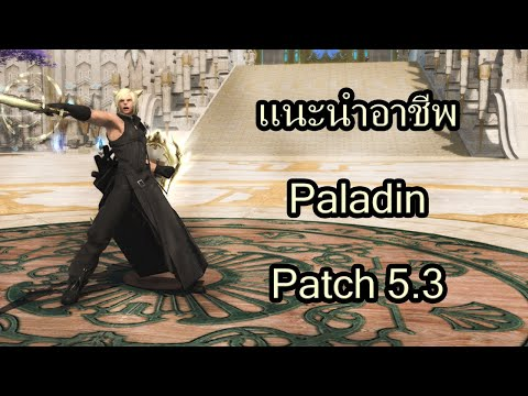 FINAL FANTASY XIV   แนะนำอาชีพ Paladin และความรู้เบื้องต้น