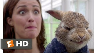 Peter Rabbit (2018) - Skirmish In The Studio Scene (5/10) | Movieclips