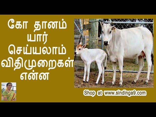 கோ தானம் யார் செய்யலாம் விதிமுறைகள் என்ன? who can donate cow and what is the right  procedure