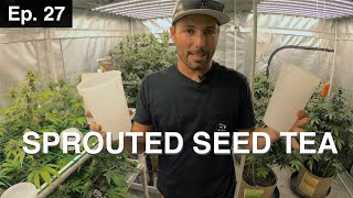 BuildASoil: SPROUTED SEED TEA 10x10: Episode #27