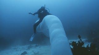 5 Dziwnych Rzeczy w Morzach i Oceanach