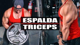 RUTINA DE ESPALDA Y TRICEPS EXPLOSIVA | Gymtopz