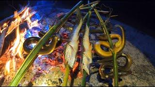 ปักเบ็ดกินข้าวป่า เหยื่อสะดิ้งจัดว่าเด็ด เบ็ดปลาไหลเนื้อวัวสดหมานๆ