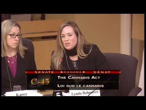 Age restrictions for legal cannabis | Senate Study on Bill C-45, The Cannabis Act