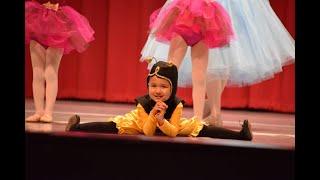 Allegro Ballet Academy's Spring Performance 2017: