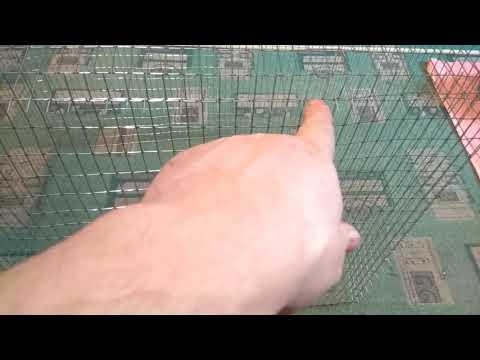 Амадины , Клетка для птиц своими руками часть 1