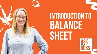 Introduction to Business Balance Sheet