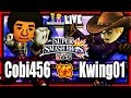cobanermani456 vs Knightwing (Kwing) Super Smash Bros 3DS Mii Fighter Highlights