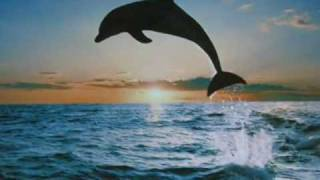 Dolphin Dance (2) ~ Music by Arvel Bird