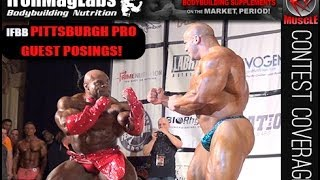 2014 IFBB Pittsburgh Pro Guest Posers!