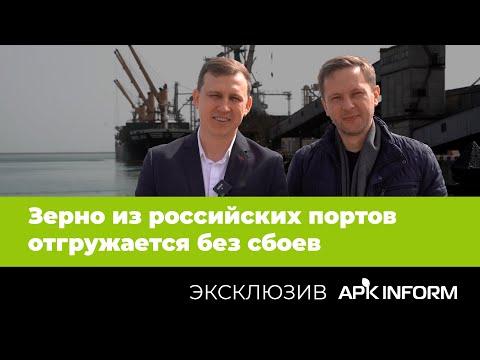 Пока зерно из российских портов отгружается без сбоев – мнение экспертов   APK-INFORM
