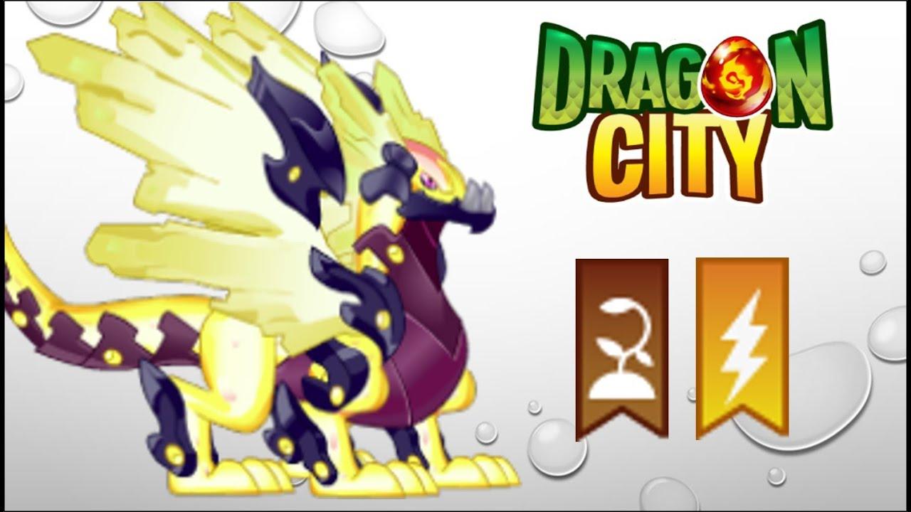 Dragon Cuity