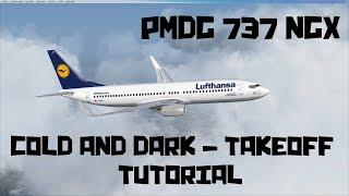 COLD AND DARK to TAKEOFF | PMDG 737 NGX Tutorial [Deutsch] | FSX