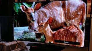 My Second Test for OLED C6P 3D LG TV on Lit Up Environment