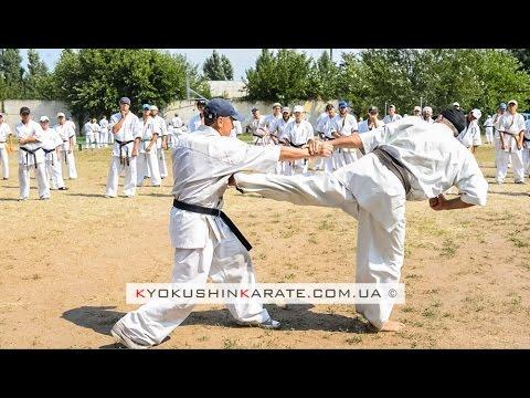 Highlight International Kyokushin