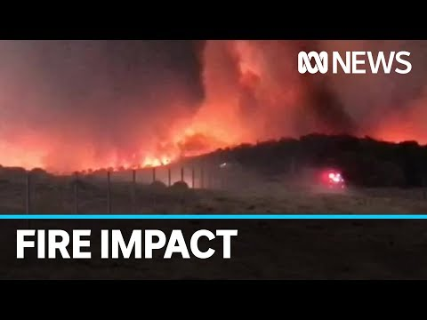 Small town of Braidwood in NSW rebuilding after bushfires | ABC News