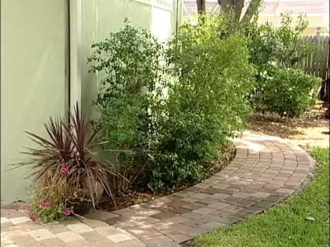 Florida-Friendly Landscaping Principles