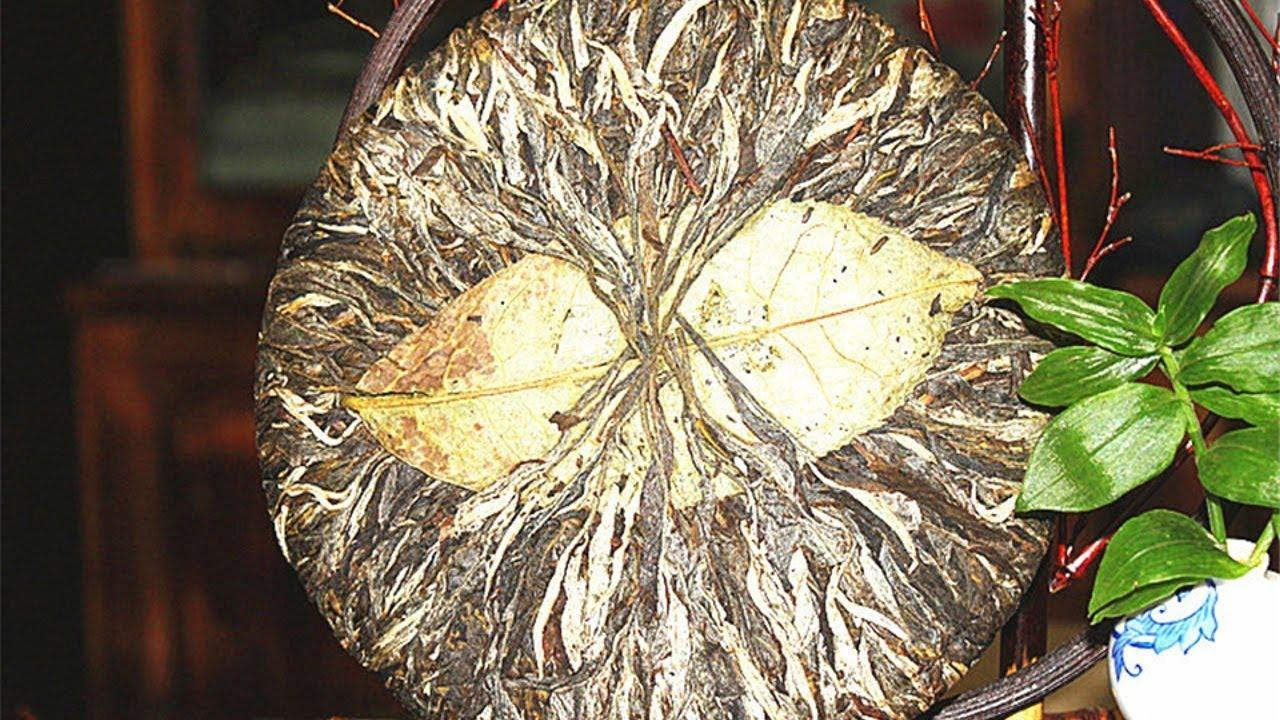 Завариваю 800-летний пуэр с Алиэкспресс | китайский чай для похудения фото
