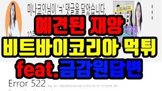 예견된 재앙 비트바이코리아 먹튀 feat.금융감독원답변