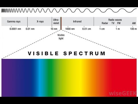 Friday Night Live What if Humans could see the Full Visible Spectrum