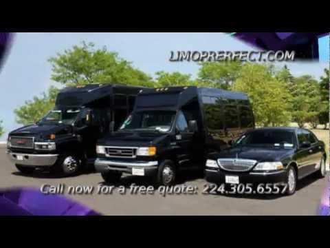 Party Bus rental Chicago Wedding Limousine Service