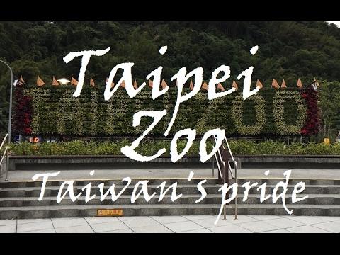 Taipei Zoo - Day trip HD Video