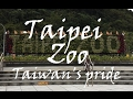 Taipei Zoo - Day trip HD Video