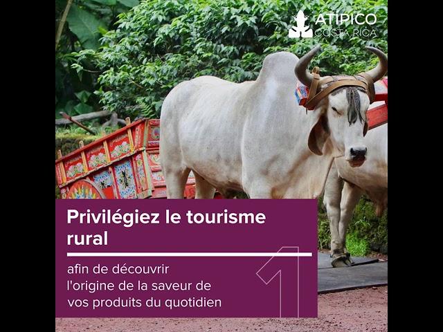 Tourisme culturel au pays de la Pura Vida