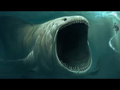Top 10 Biggest Animals In THE WORLD!! 2019 #2
