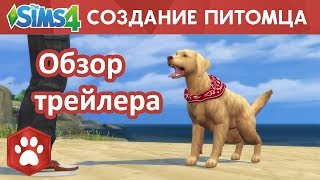 The Sims 4   Кошки и собаки   дополнение   обзор трейлера   Создание питомца