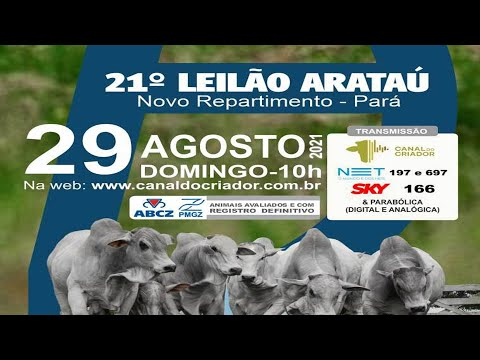 LOTE 75