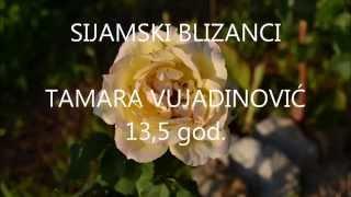 Sijamski blizanci  Cover by Tamara Vujadinović