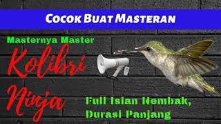 Masteran Kolibri Ninja Full Isian Nembak Masteran Kolibri Ninja Durasi Panjang mp3