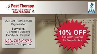 Pest Therapy | Buckeye AZ Pest Control