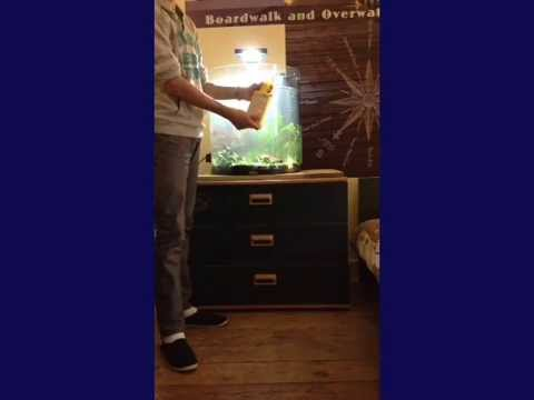 installation de l 39 aquarium tetra aquaart 60l youtube. Black Bedroom Furniture Sets. Home Design Ideas