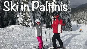 Ski in Paltinis, Sibiu - Partia Oncesti: Prezentare si Informatii utile