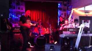The Travelling Riverside Blues Band - Johnny Slide playing mandolin