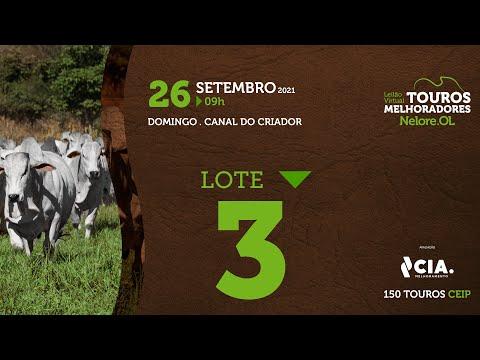 LOTE 3 - LEILÃO VIRTUAL DE TOUROS 2021 NELORE OL - CEIP