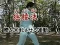 通背拳 Tongbeiquan   1