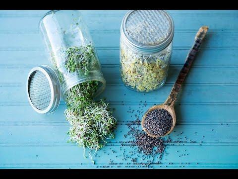 Семена льна для похудения: барьер для всасывания жиров