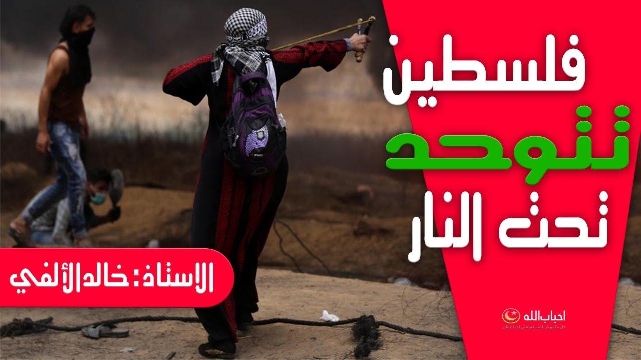 فلسطين تتوحد تحت النار ||  ومصر المؤمنة تتصدق عليها بنصف مليار || الاستاذ : خالد الألفي