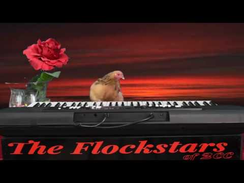Star Spangled Banner By Jokgu Of The Flockstars Doovi
