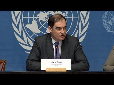 UN warns of genocide in C.Africa as country in transition