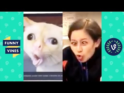 TRY NOT TO LAUGH - Funny Videos From Around The Internet!