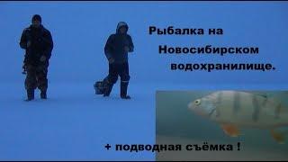 Рыбалка на Новосибирском водохранилище Подводные съёмки Зимняя рыбалка на окуня 2020