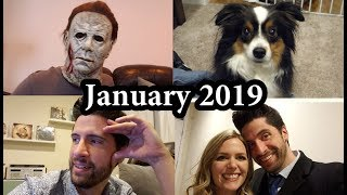 January 2019 - Vlog/Journal
